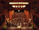 Das Orchester des Theaters Altenburg-Gera im Landestheater Altenburg
